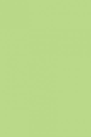 D134-PS11-VERDE-PASTEL_GREEN
