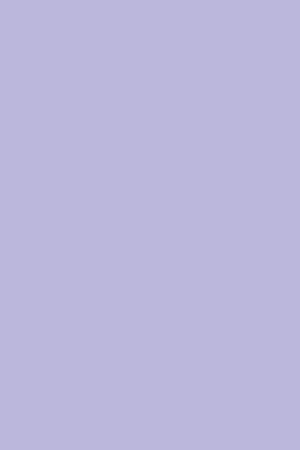 D138-PS11-LILA_03