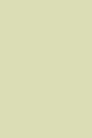 D304-GREEN-PISTACHIO_01